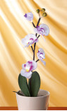 branche d'orchidée lumineuse - GINGER